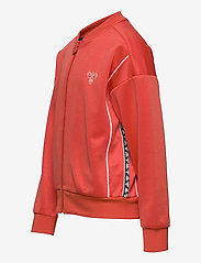 Hummel - hmlMADISON ZIP JACKET - sweatshirts - chili - 2