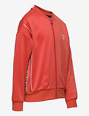 Hummel - hmlMADISON ZIP JACKET - sweatshirts - chili - 3
