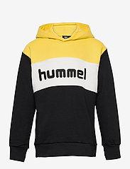 Hummel - hmlMORTEN HOODIE - hoodies - maize - 0