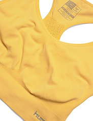 Hummel - SUE SEAMLESS SPORTS TOP - urheiluliivit - cream gold - 2