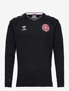 DBU GK PRO JERSEY LS 18/19 - voetbalshirts - anthracite