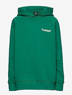 hmlSOLO HOODIE - kapuzenpullover - deep green