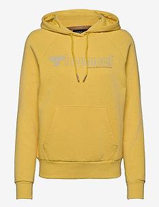 hmlNONI HOODIE - hoodies - cream gold