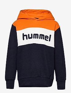 hmlMORTEN HOODIE - hoodies - carrot