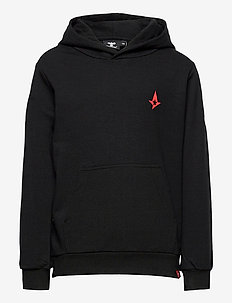 hmlASTRALIS CUATRO HOODIE - hoodies - black