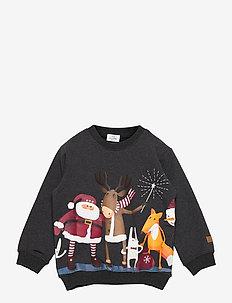 Sejer - Sweatshirt - sweatshirts - antracite melange
