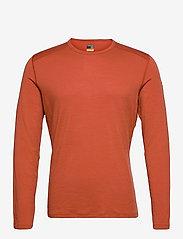 Icebreaker - Mens 200 Oasis LS Crewe - thermo ondershirts - roote - 0