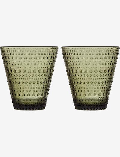 Kastehelmi tumbler 30cl 2pcs - juomalasit - moss green