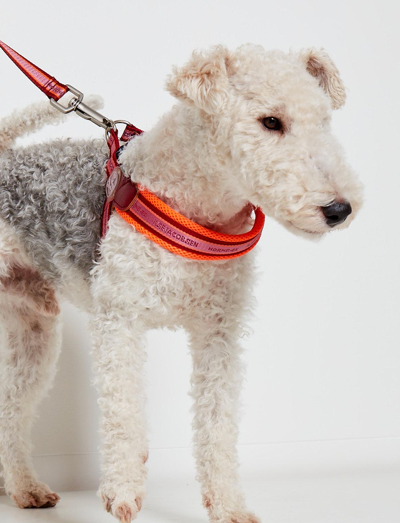 Ilse Jacobsen - Large Dog Harness - hundetilbehør - black platin - 0