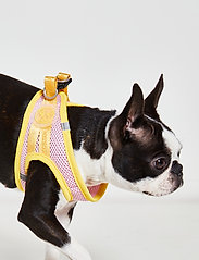 Ilse Jacobsen - Dog Harness - dog accessories - amber yellow rosebud - 0