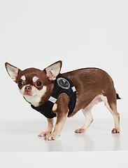Ilse Jacobsen - Dog Harness - dog accessories - black - 0