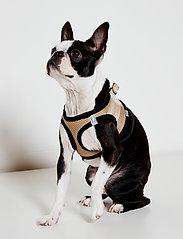 Ilse Jacobsen - Dog Harness - accessoires pour chiens - platin black - 0