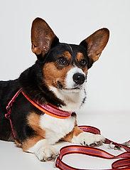 Ilse Jacobsen - Dog Leash - accessoires pour chiens - burnt henna - 0