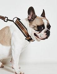 Ilse Jacobsen - Dog Collar - accessoires pour chiens - army - 3