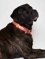 Ilse Jacobsen - Dog Collar - dog accessories - burnt henna - 0