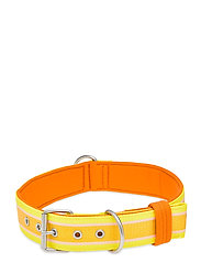 Dog Collar - SUNBEAM