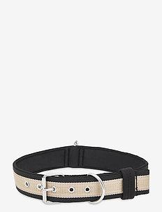 Dog Collar - hundezubehör - platin