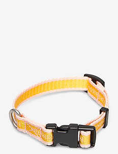 Dog Collar for Puppies - hondenaccessoires - sunbeam coral blush