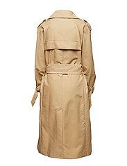IW50 01 Amber Coat