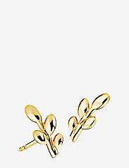 Izabel Camille - Olivia - studs - shiny gold - 0