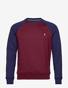 ADVANTAGE COLORBLOCK RAGLAN CREW - PORT ROYALE