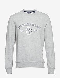 SALTWATER COPENHAGEN CREW - sweatshirts - lt grey htr