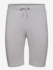 Stretch Fleece Light Shorts - STONE GREY MELANGE
