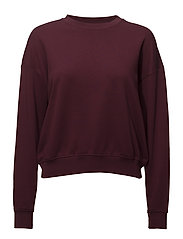Thea JL Sweat - BURGUNDY
