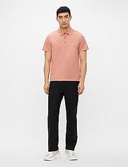 J. Lindeberg - Miles Jersey Polo Shirt - kurzärmelig - rose coppar - 4
