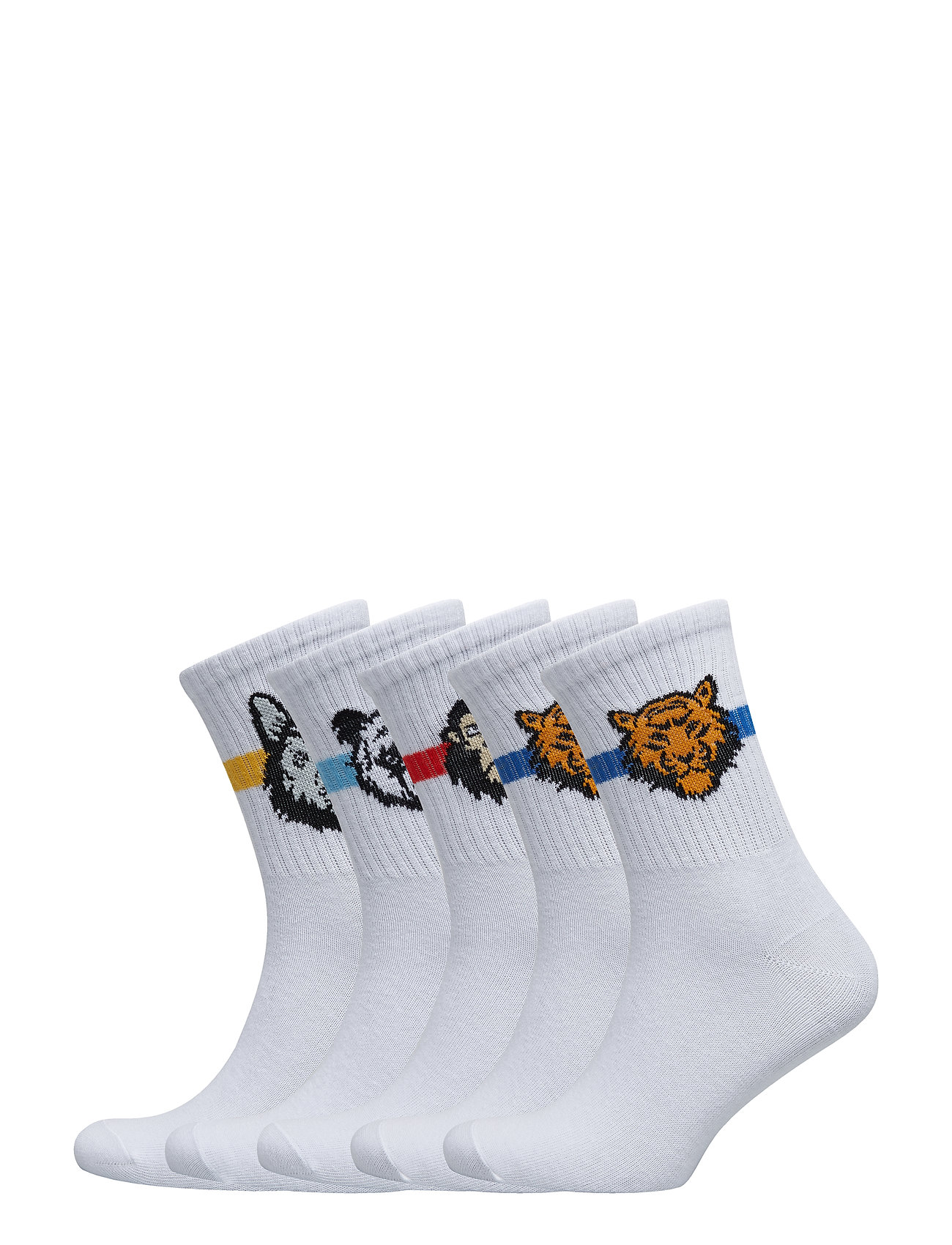 Image of Jacanimals Tennis Sock 5 Pack Junior (3122439649)