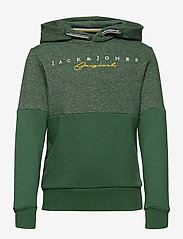 Jack & Jones - JORTRAILER SWEAT HOOD NOOS JR - hupparit - trekking green - 0
