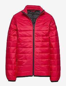 JJEERIC PUFFER COLLAR NOOS JR - puffer & padded - rio red