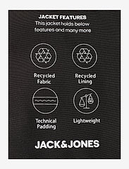 Jack & Jones - JJBASE LIGHT HOOD JACKET - fôrede jakker - black - 2