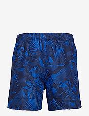 JBS - JBS swim shorts - shorts - blue - 1
