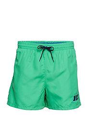 JBS swim shorts - MULTI
