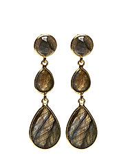 Elegant Drops Earrings - LABRADORITE