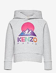 Kenzo - SWEATSHIRT - kapuzenpullover - grey chine - 0