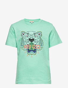 TIGER JB 1 - logo - green