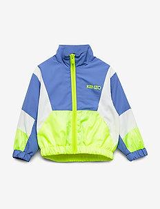 JIOVANNI - bomber jackets - cornflower