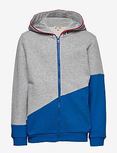 LOGO JB 6 - hoodies - grey