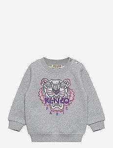TIGER JG B2 BB - sweatshirts - gris moyen