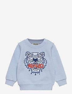 TIGER JB B3 BB - sweatshirts - bleu ciel