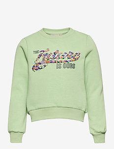 KONLILLIE L/S BOX SWT - sweatshirts - sprucestone