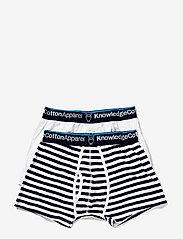 Knowledge Cotton Apparel - MAPLE 2 pack striped underwear - bielizna - total eclipse - 2