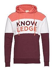 Hood sweat Knowledge - OCS/Vegan - MAUVE WINE