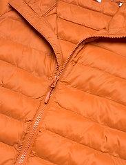 Knowledge Cotton Apparel - Eco Active Thermore™ Jacket - Vegan - vestes matelassées - rust - 3