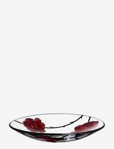 TATTOO DISH D 380MM - serverings & anretningsfade - red