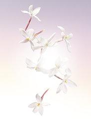 Lancôme - Idôle Eau de Parfum 25 ml - parfume - no colour - 6