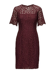 Lace Sheath Dress - RIOJA