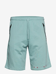Ice Flag Shorts - PISTACIE